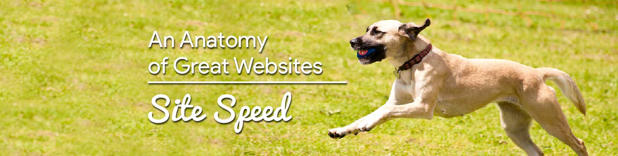 How to Increase my Site Speed | Part 1 of the Anatomy of Great Websites